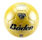 New ball, website for Professional Arena Soccer League