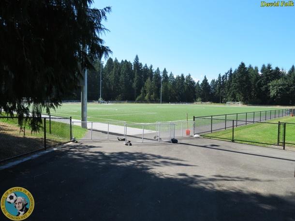 Gordon Field awaits a possible small soccer venue. (David Falk)