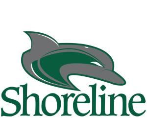 shoreline_dolphins