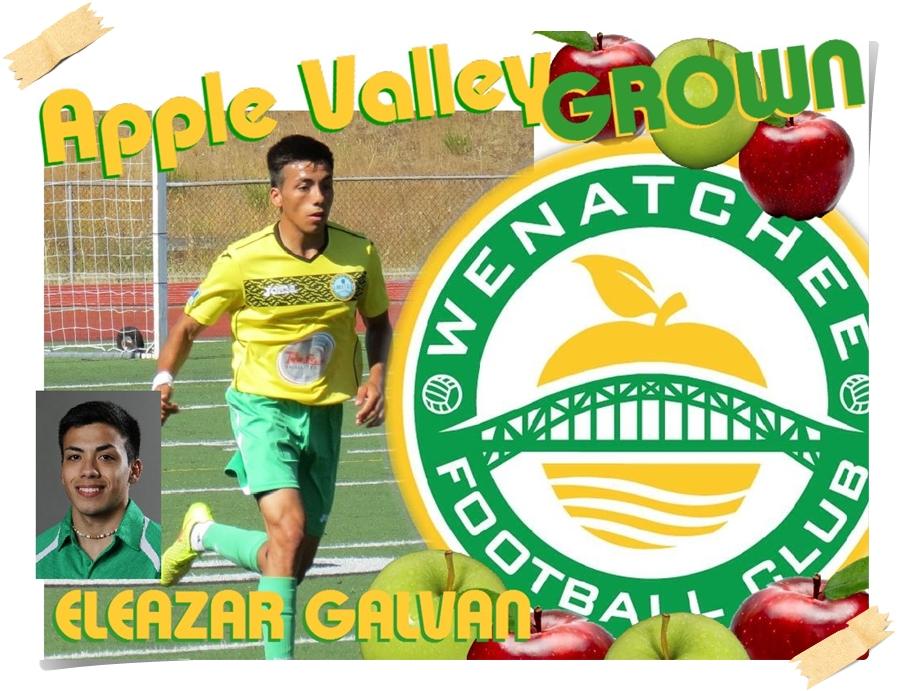AVG-galvan